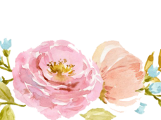 Watercolor Flowers PNG Vector, Clipart, Psd.