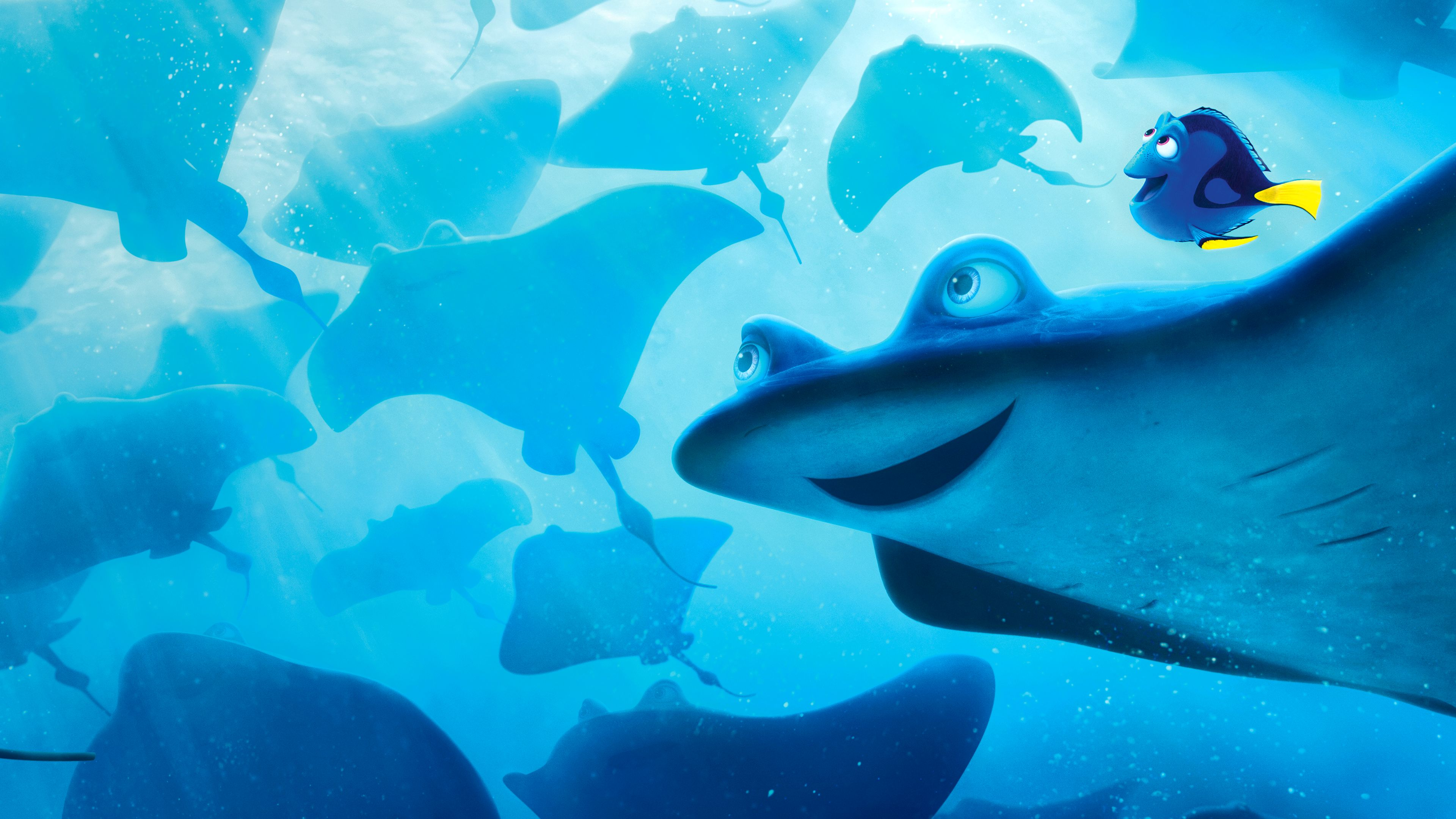 Watch Finding Dory.