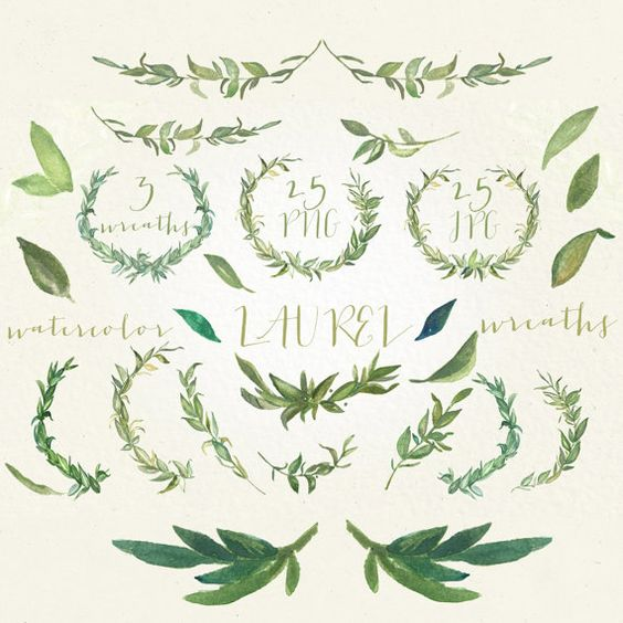 Laurel wreaths and foliages. Watercolor clip art hand drawn. Light.