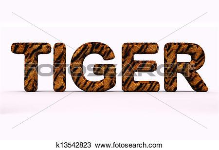 Drawing of word tiger fur alphabet. k13542823.