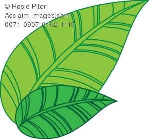 Tea leaves clipart.