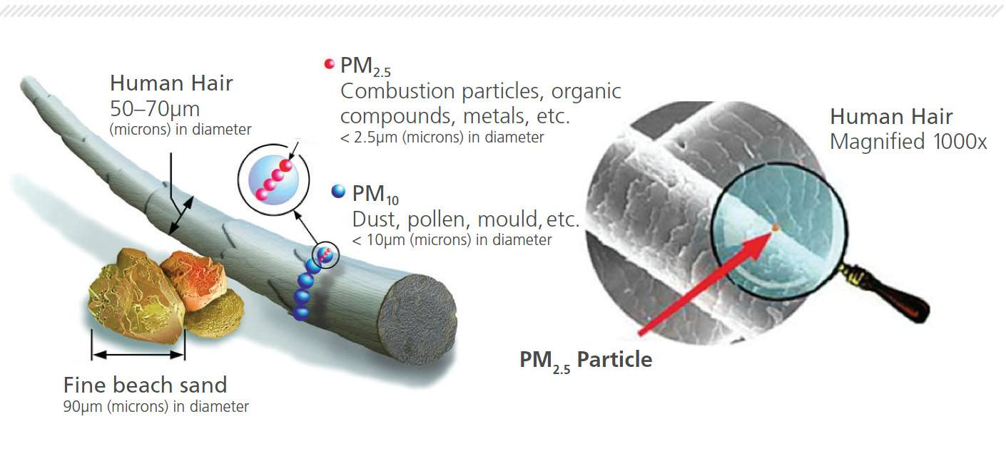 Air Pollution Facts For City Living.