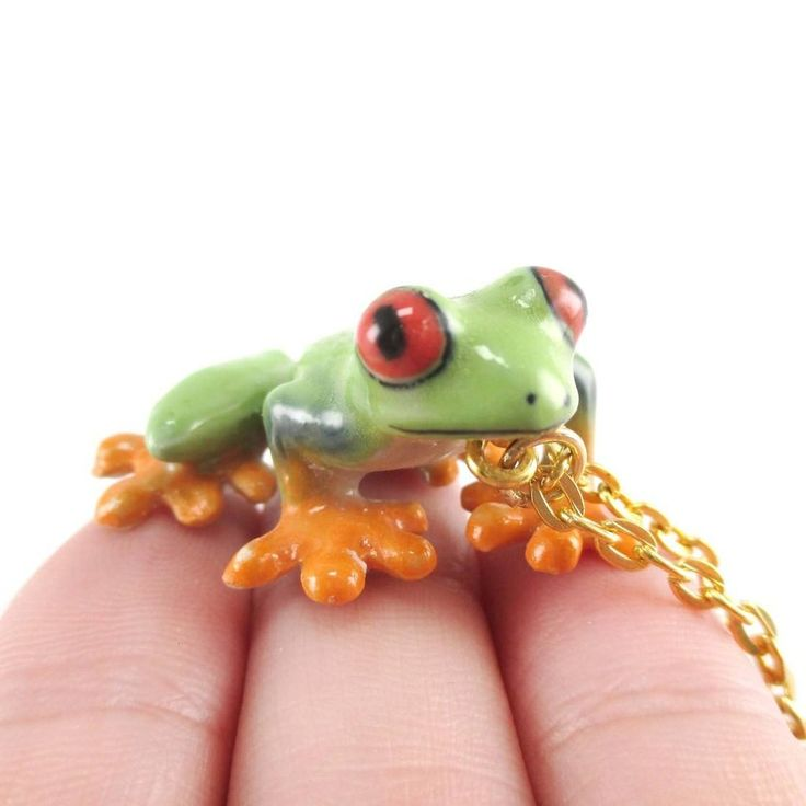 1000+ ideas about Red Eyed Tree Frog on Pinterest.