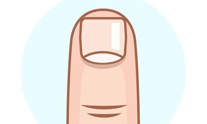 Finger nails clipart 6 » Clipart Station.