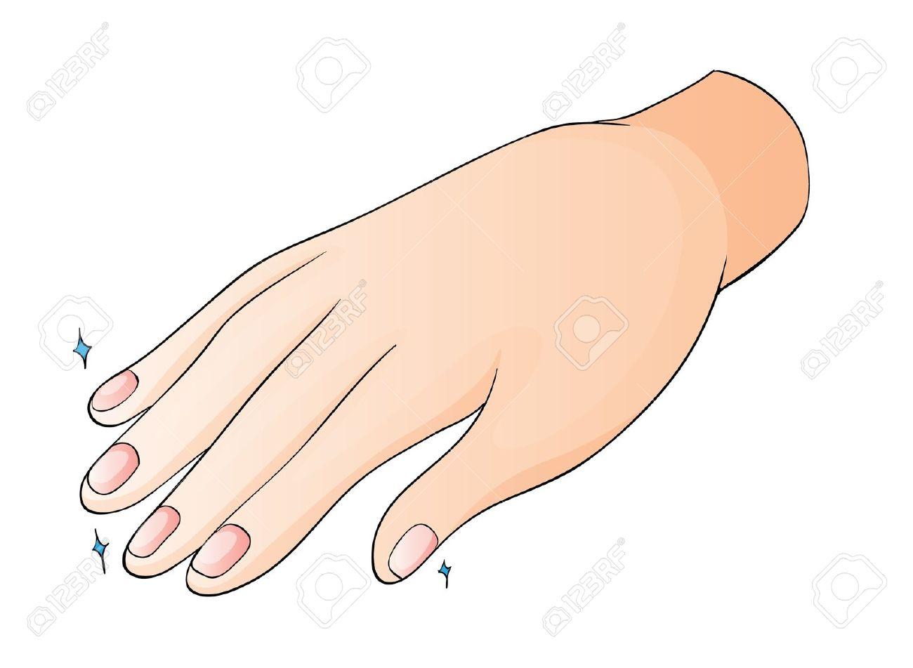 Free fingernail clip art.