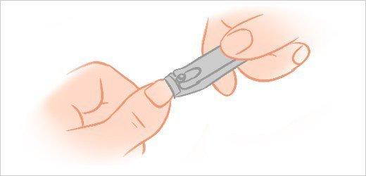 Finger nails clipart » Clipart Portal.