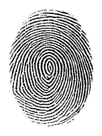 18,775 Fingerprint Stock Vector Illustration And Royalty Free.