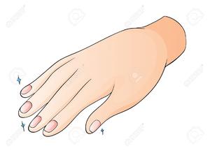 Free Clipart Fingernails.