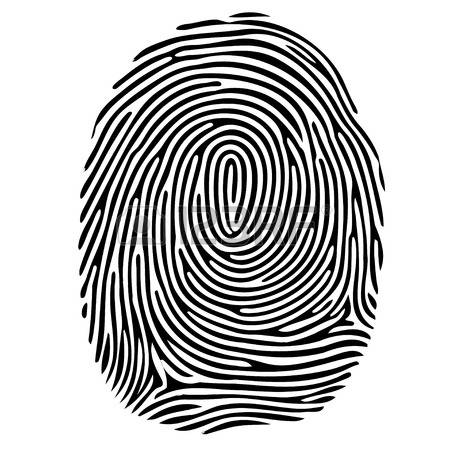 10,534 Fingerprint Stock Vector Illustration And Royalty Free.