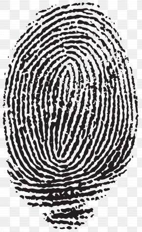 Fingerprint Images, Fingerprint PNG, Free download, Clipart.