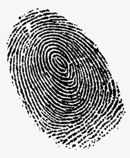 Free Fingerprint Clip Art with No Background.