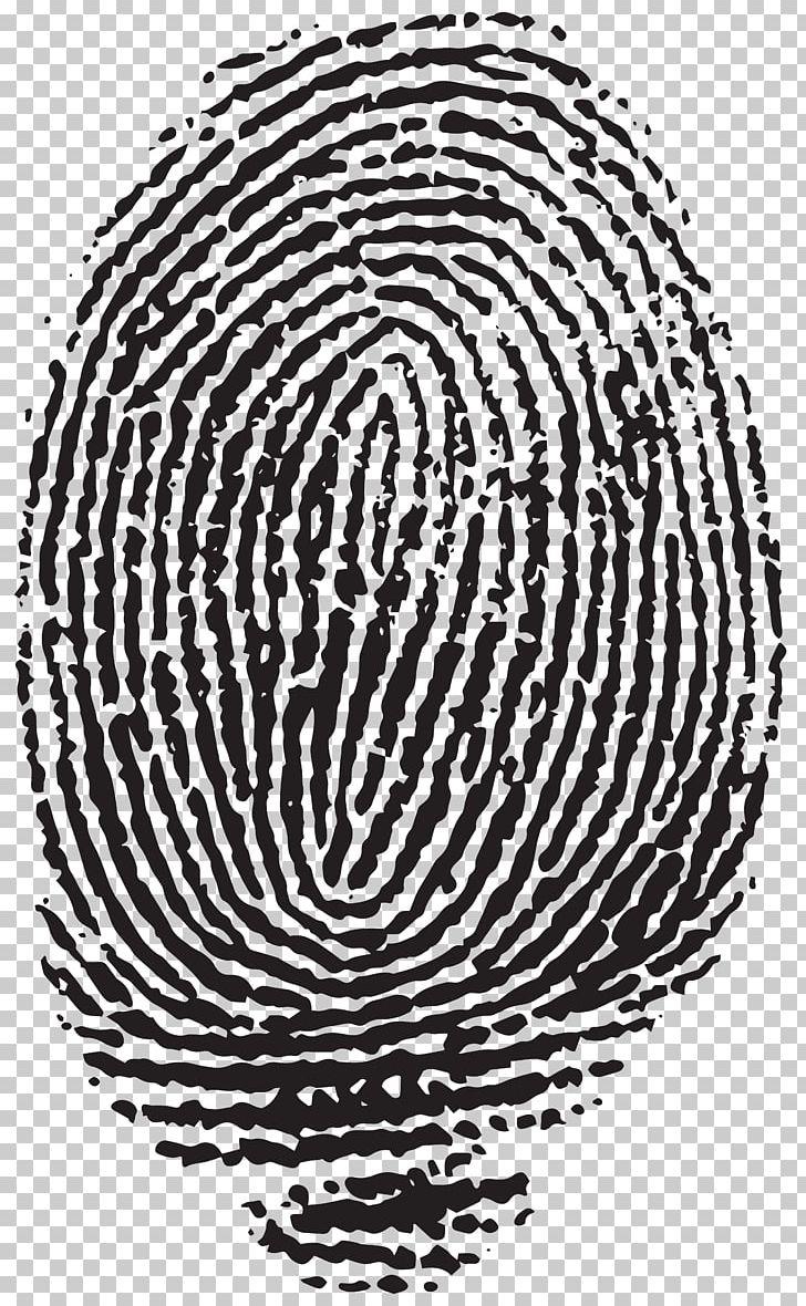 Fingerprint Hallongrotta PNG, Clipart, Black And White.