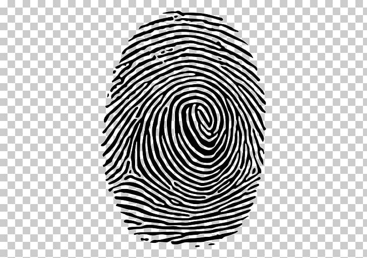 Fingerprint , fingerprint, finger print PNG clipart.