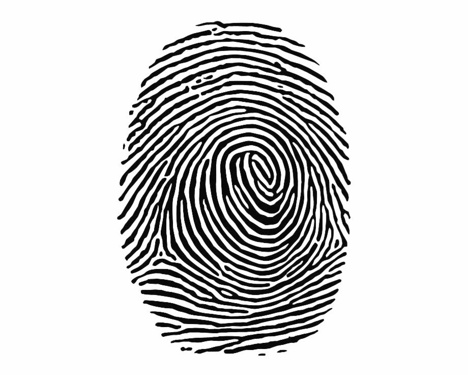 Fingerprint Vector Free PNG Images & Clipart Download #930549.