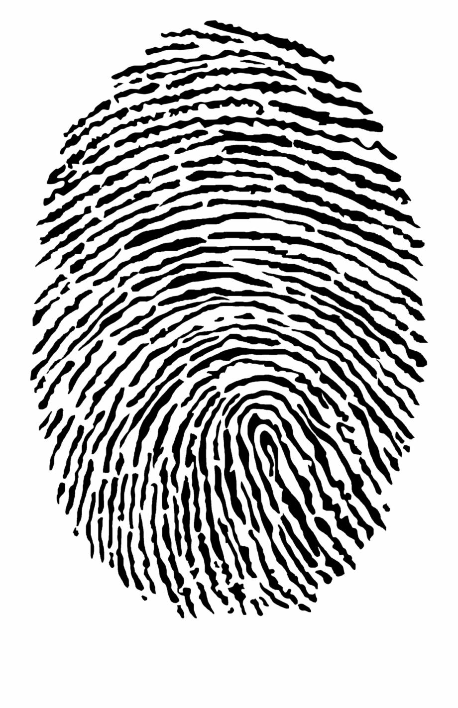 Fingerprint Png.