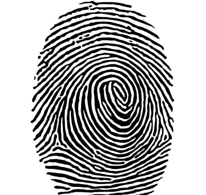 Fingerprint vector clip art cdr, eps file.
