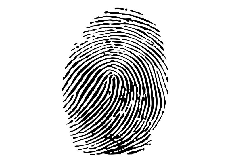 Fingerprint Vector Free.