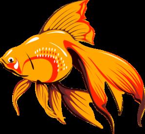 Fish fins clipart.