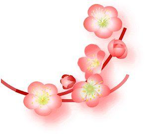 fiori di pesco disegno.