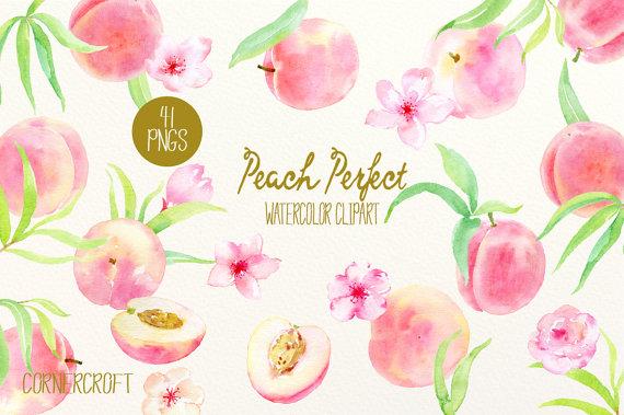 Acquerello Clipart Peach perfetto pesche rosa fiori di CornerCroft.