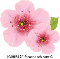 Blossom Clip Art Royalty Free. 103,175 blossom clipart vector EPS.