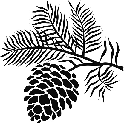 Pine cone clip art black and white.