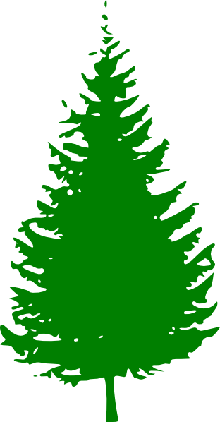 Green Pine Clip Art at Clker.com.
