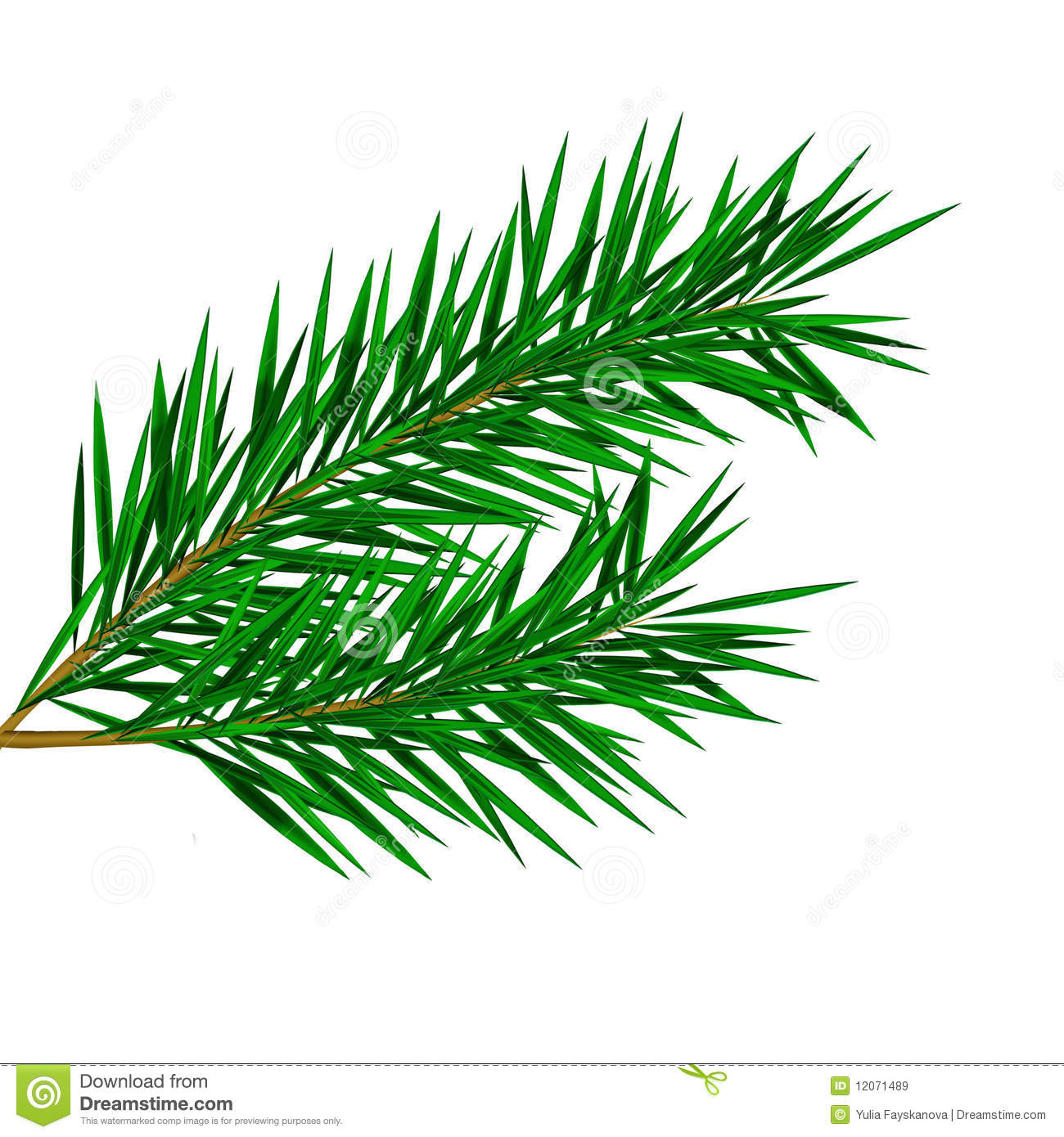 Pine straw clipart #4