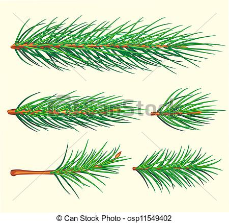 Pine needle Clipart Vector and Illustration. 2,929 Pine needle.