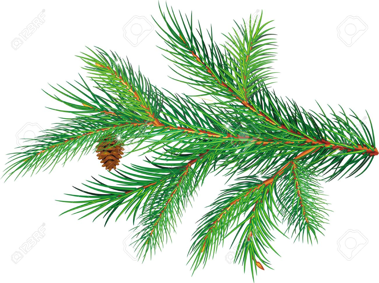 Fir Tree Branches Clip Art.