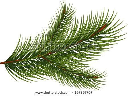 Pine straw clipart #3