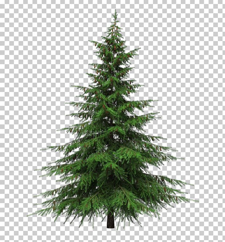 Balsam Fir Artificial Christmas Tree Pre.