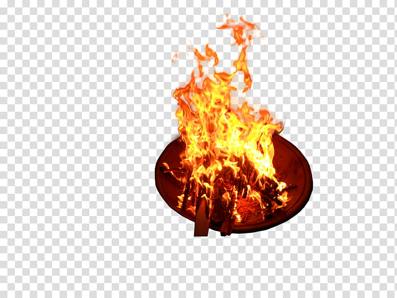 Fire, wood burning on brown plate transparent background PNG.