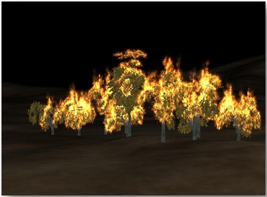 Procedural Trees and Procedural Fire in a Virtual World.