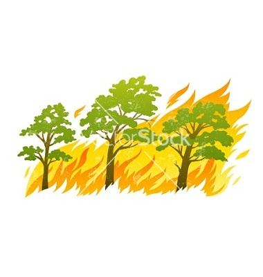 Burning forest trees in fire vector by LoopAll.