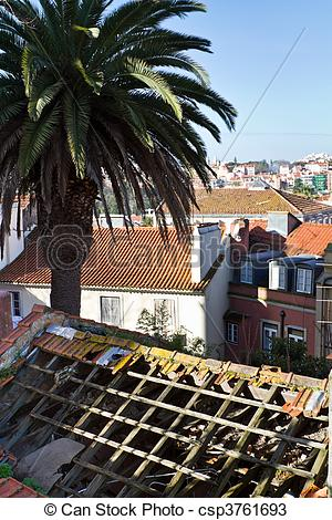 Stock Photos of Fire damaged rooftop with palm tree.