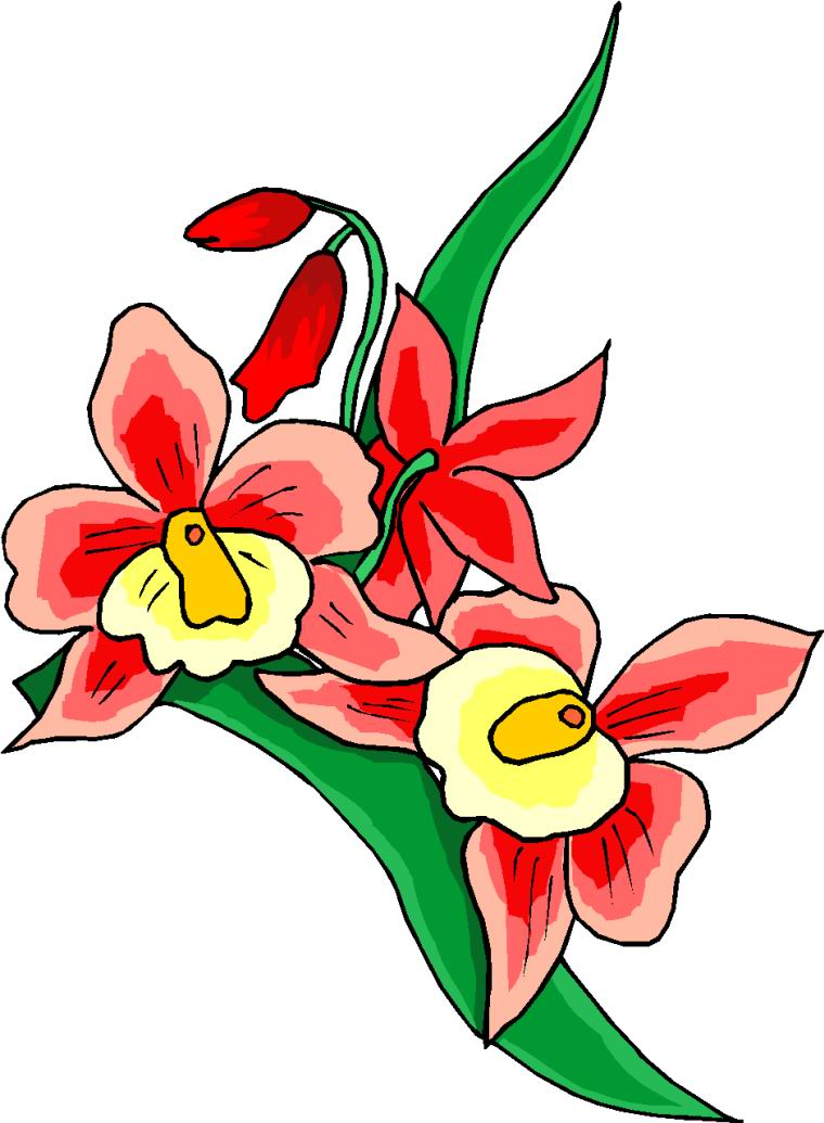 Floral and Flowers Clipart.