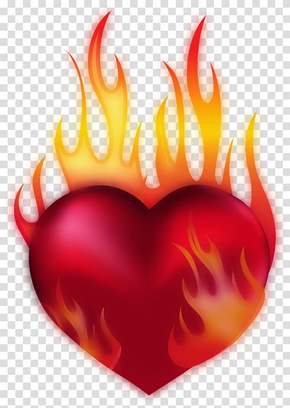Heart Fire , heart transparent background PNG clipart.