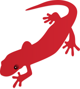 Salamander Clip Art Download.