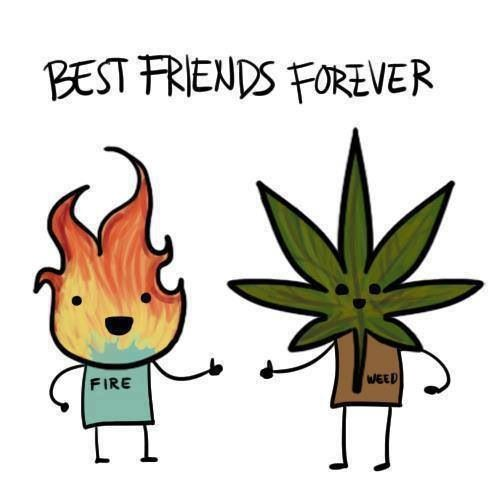 Best friends forever! Marijuana and fire.