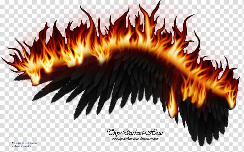 Wings on Fire Black , The Darkest Hour illustration.