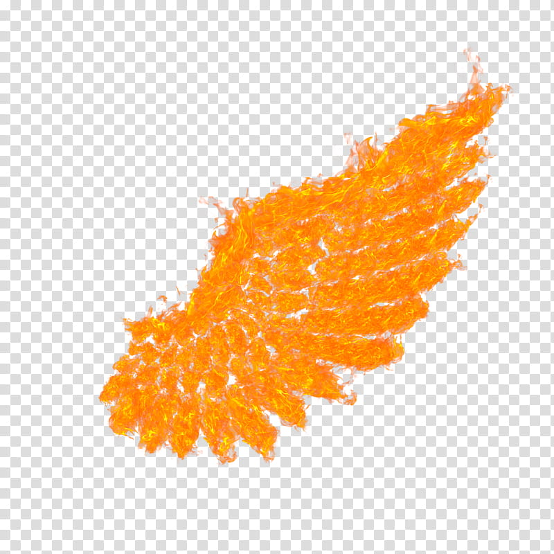 Fire Wings transparent background PNG clipart.