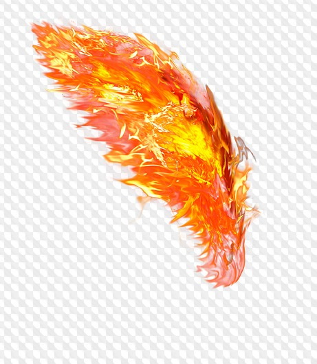Fire wings transparent PNG.