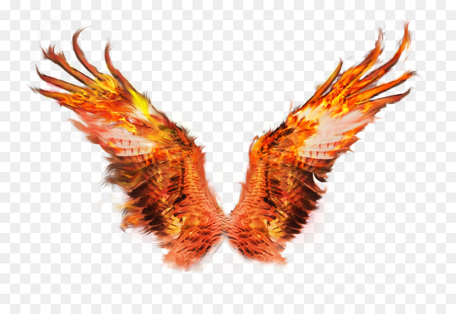 Wings Of Fire png download.