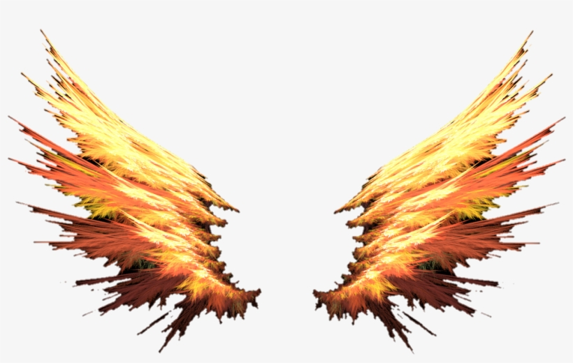 Fire Wings Red Orange Colorful Cute Badass Cool.
