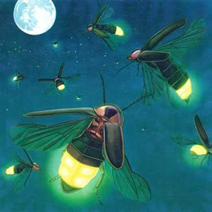 World clipart with a firefly.