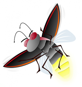 Firefly Clip Art Download.