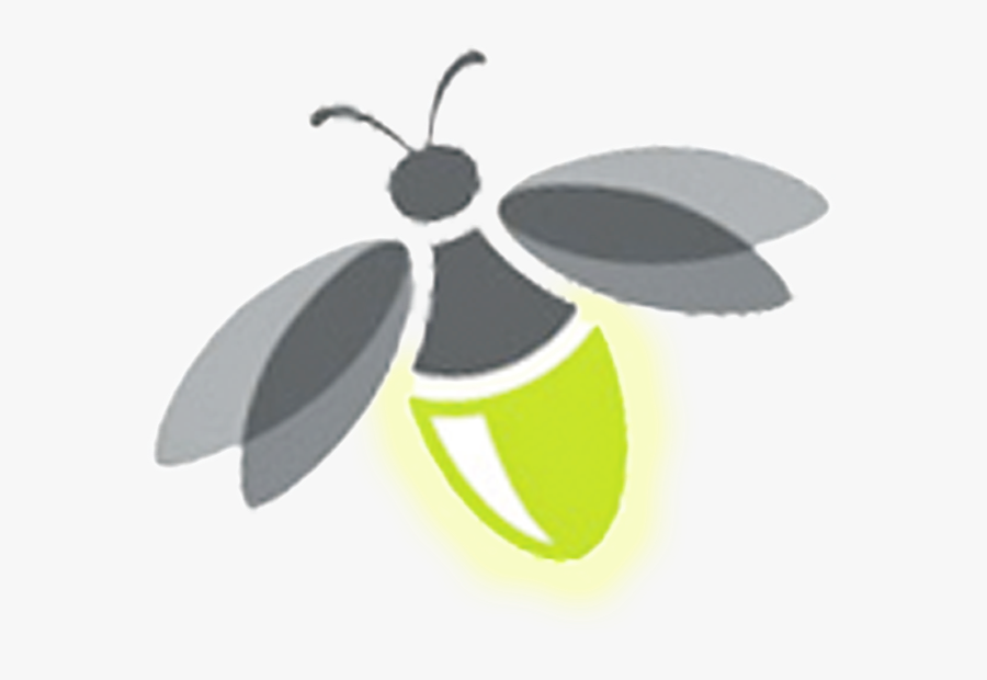 Firefly Transparent Png.