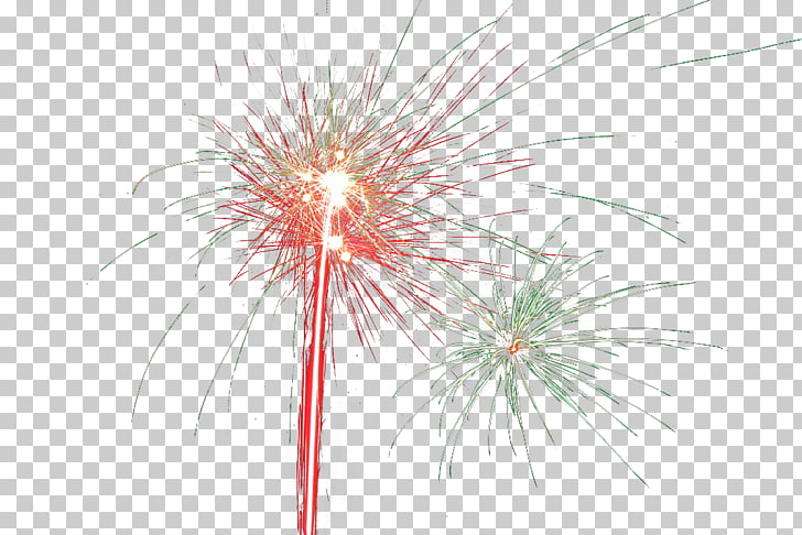 Fireworks Computer file, Gorgeous fireworks PNG clipart.