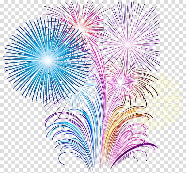 Fireworks display illustration, Fireworks Pyrotechnics.